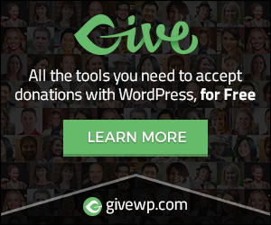 We recommend Give WP for donation forms in Wordpress