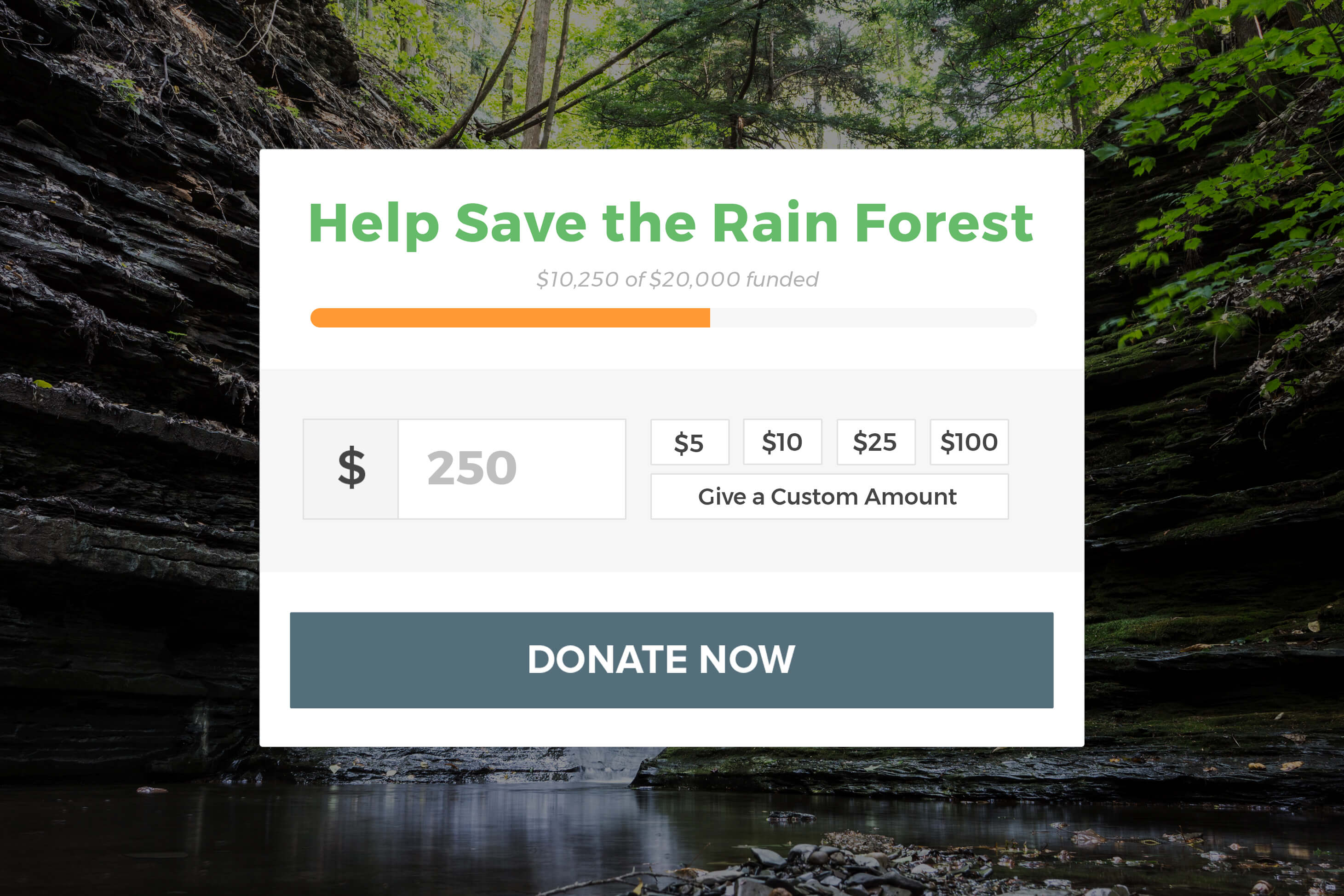Donation Forms – GiveWP