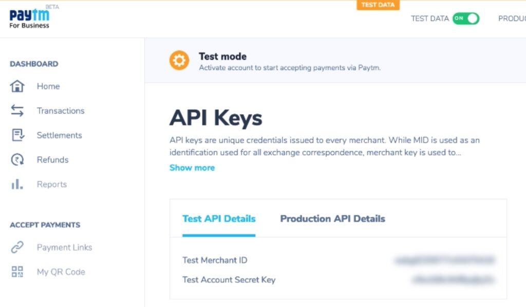 Paytm API keys for testing