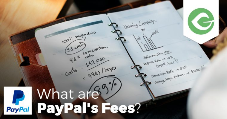 You want to collect donations from your website with credit cards, but what does that really mean? What are PayPal's fees and how much does it really cost?