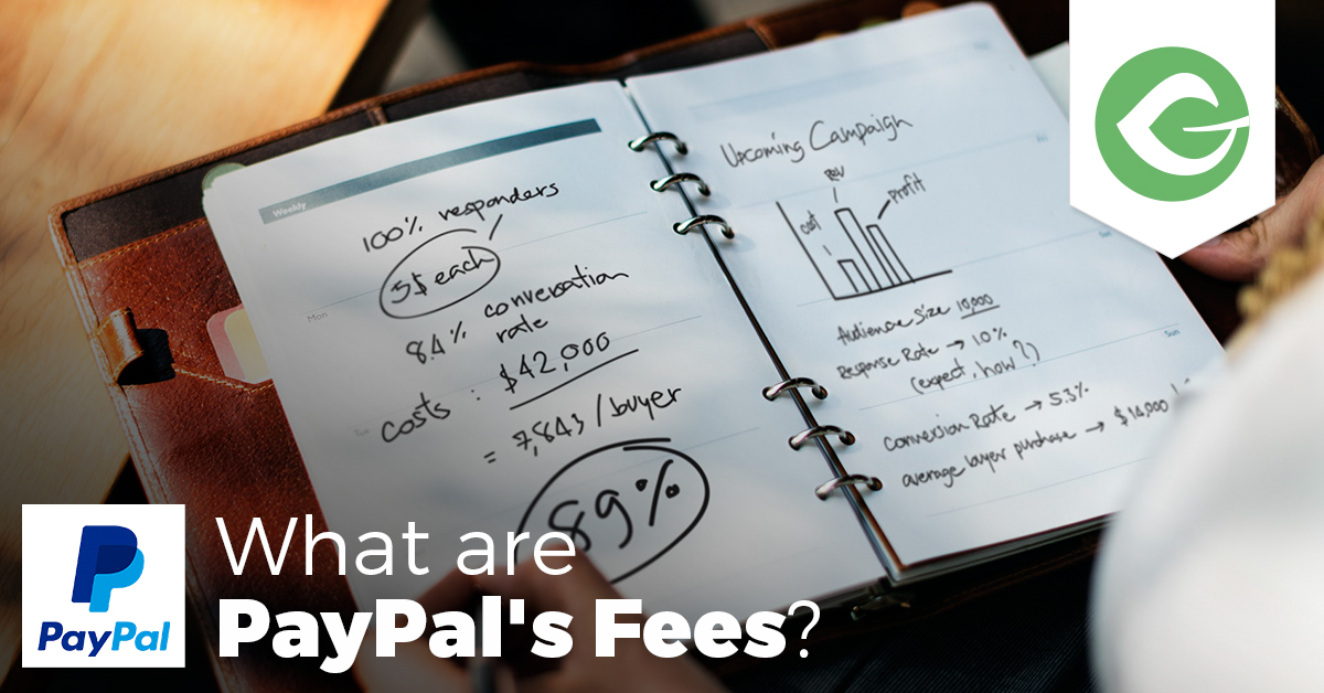 PayPal Fees: How Much Does PayPal Take From a Donation? – GiveWP