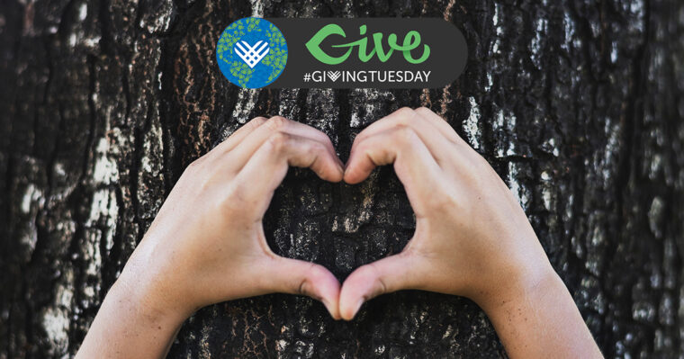 Giving Tuesday Campaign-Ideas