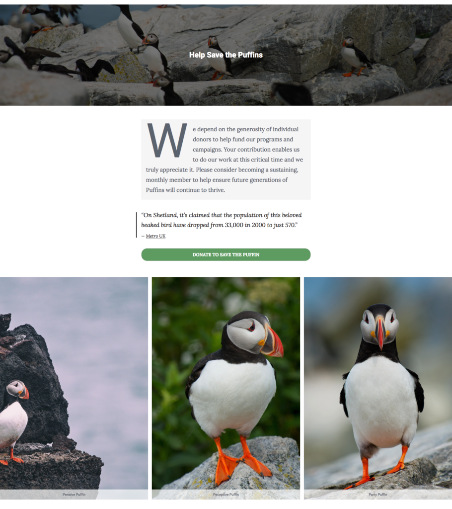 save the puffins Giving Tuesday landing page with bold rich media