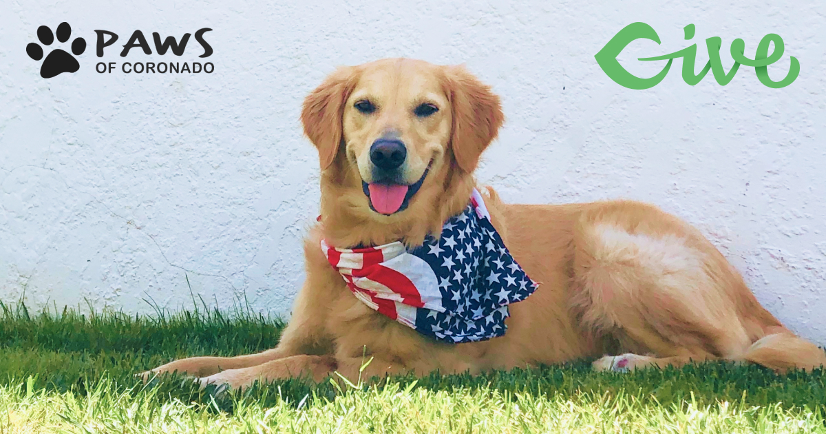 PAWS of Coronado 2020 Give Story Featured Image
