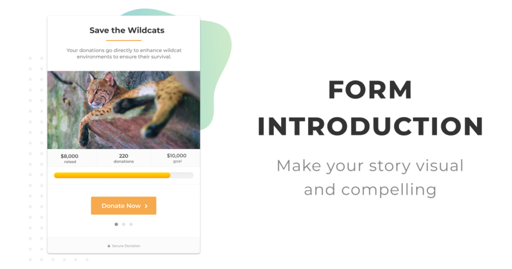 Form Introduction: Make your form introduction visual and compelling.